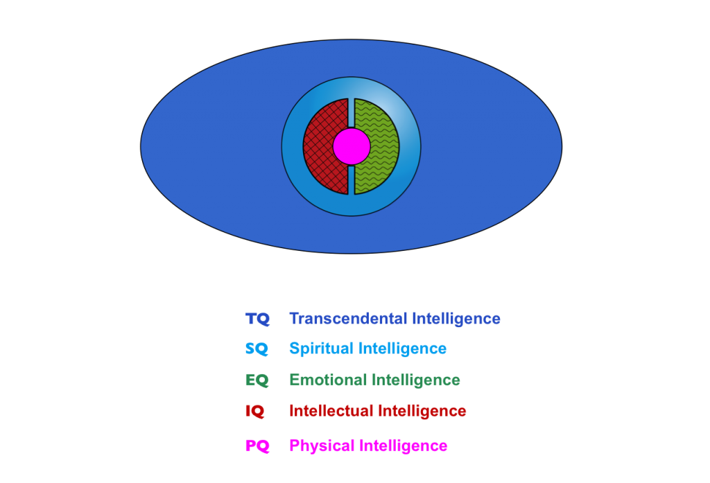 Five Dimensions of Intelligence